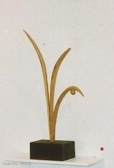 la planta.  by m.lafora.