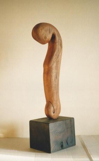 the fetus. by m.lafora.
